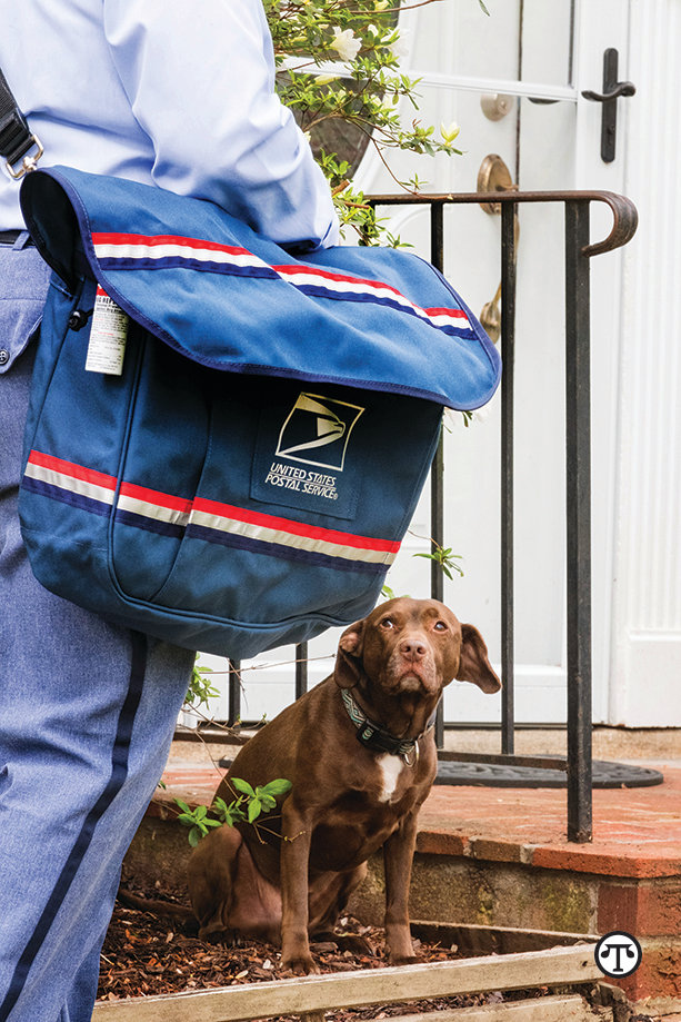 U.S. Postal Service Offers Tips To Stop Dog Attacks On Mail Carriers